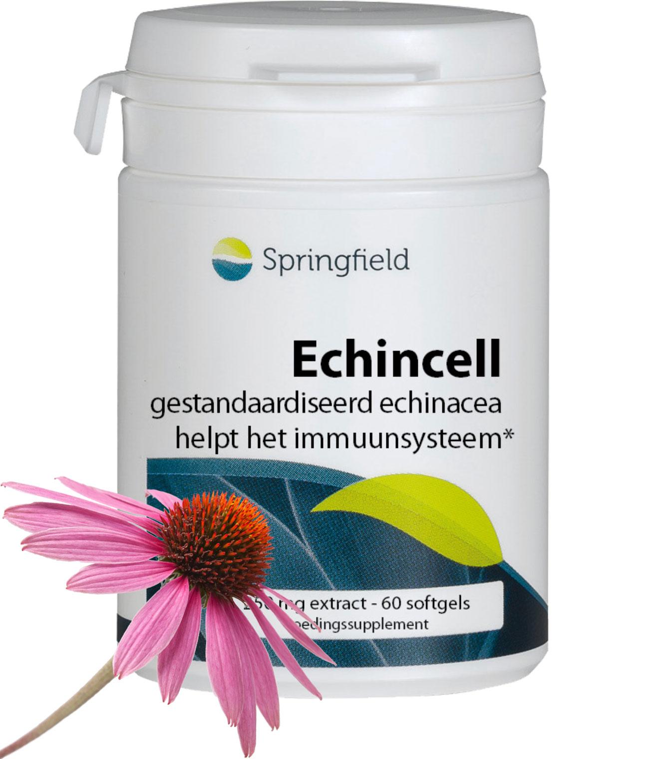 Echincell 3-voudig gestandaardiseerd echinacea helpt het immuunsysteem