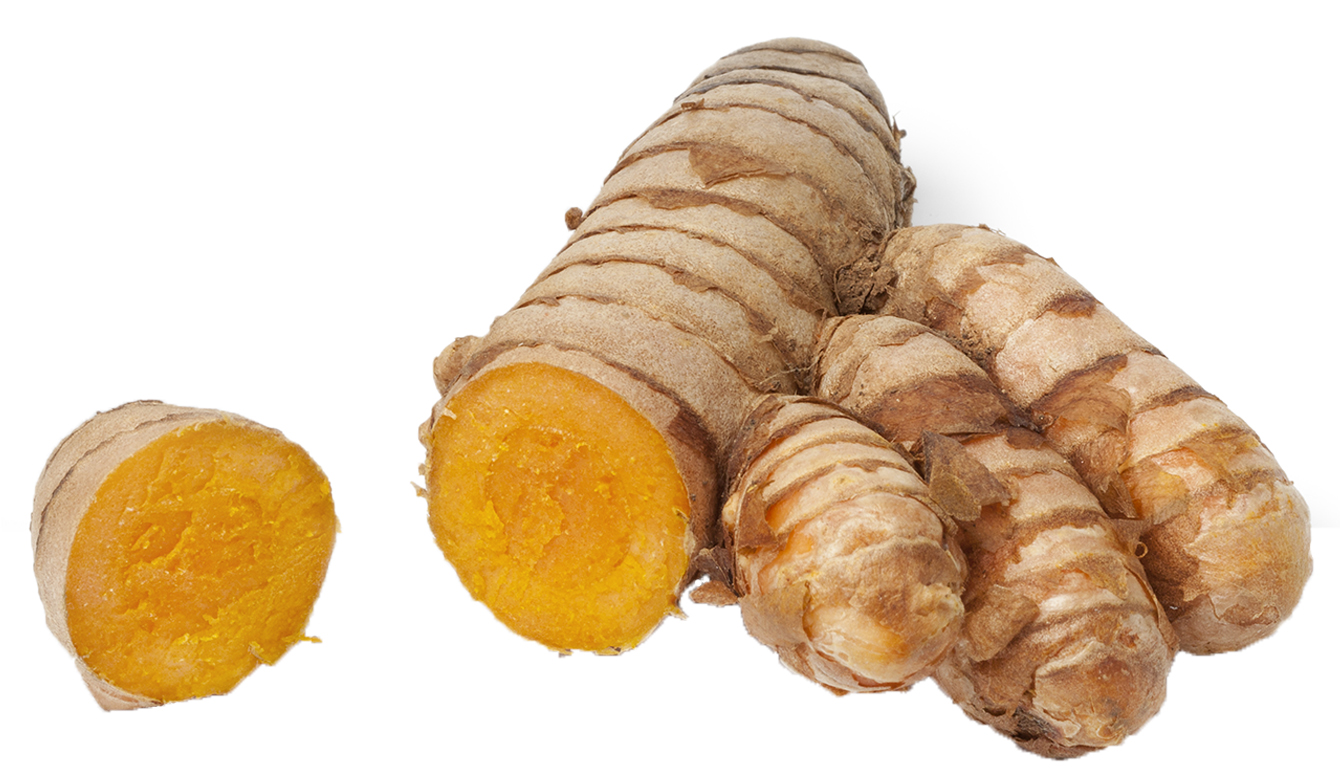 Curcuma longa (kurkuma, geelwortel)