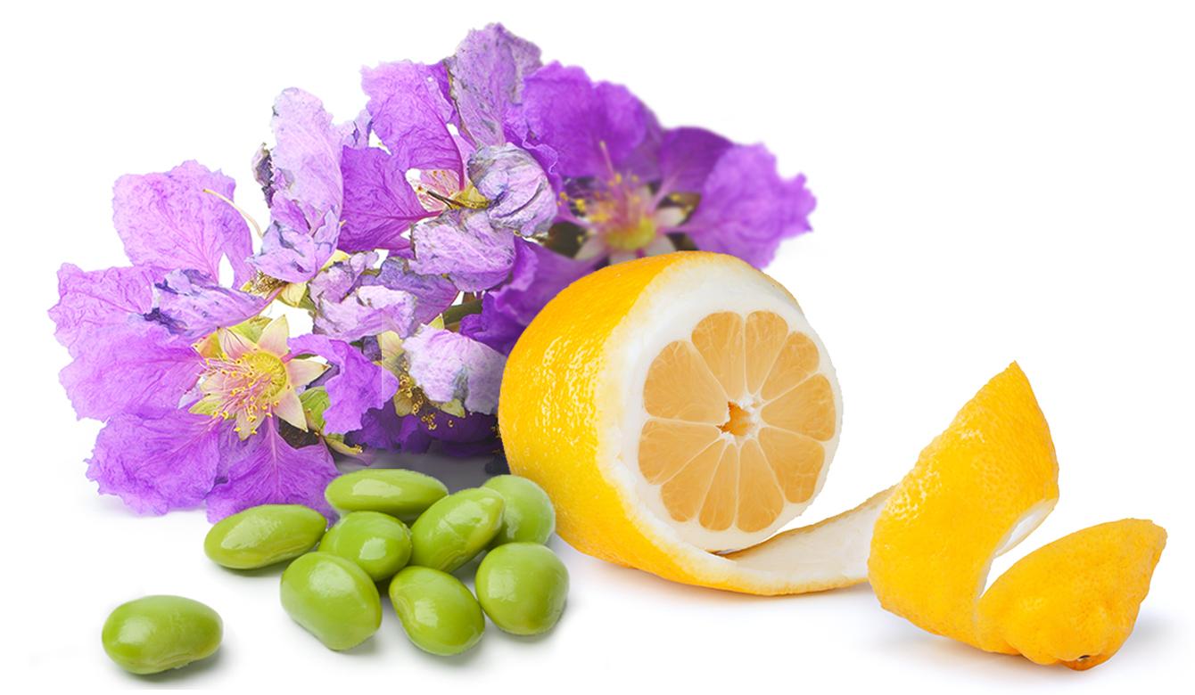 Speciale ingrediënten - Lagerstroemia speciosa, Gemodificeerd Citrus Pectine, soja isoflavonen