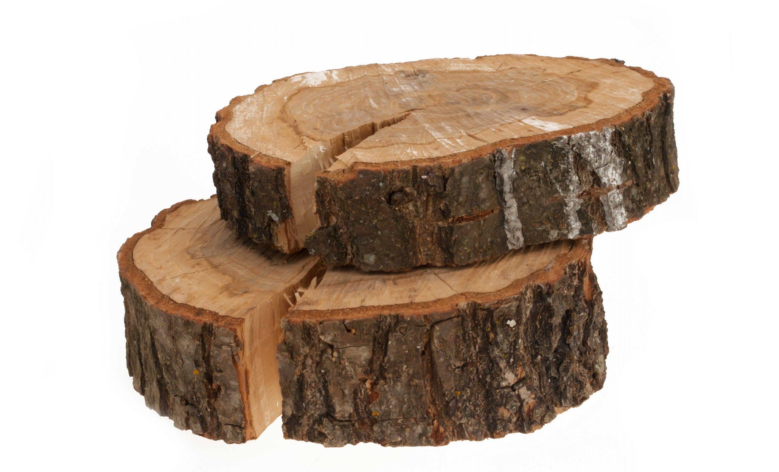 Fytosterolen en Fytosterolinen uit de bast van de pijnboom