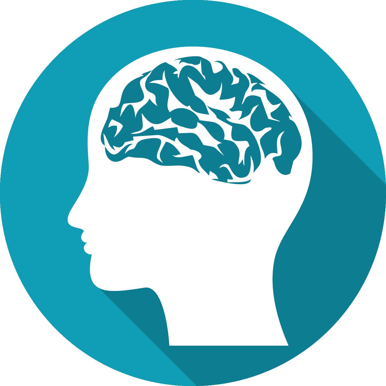 Hoofd-hersenen-toepassingen