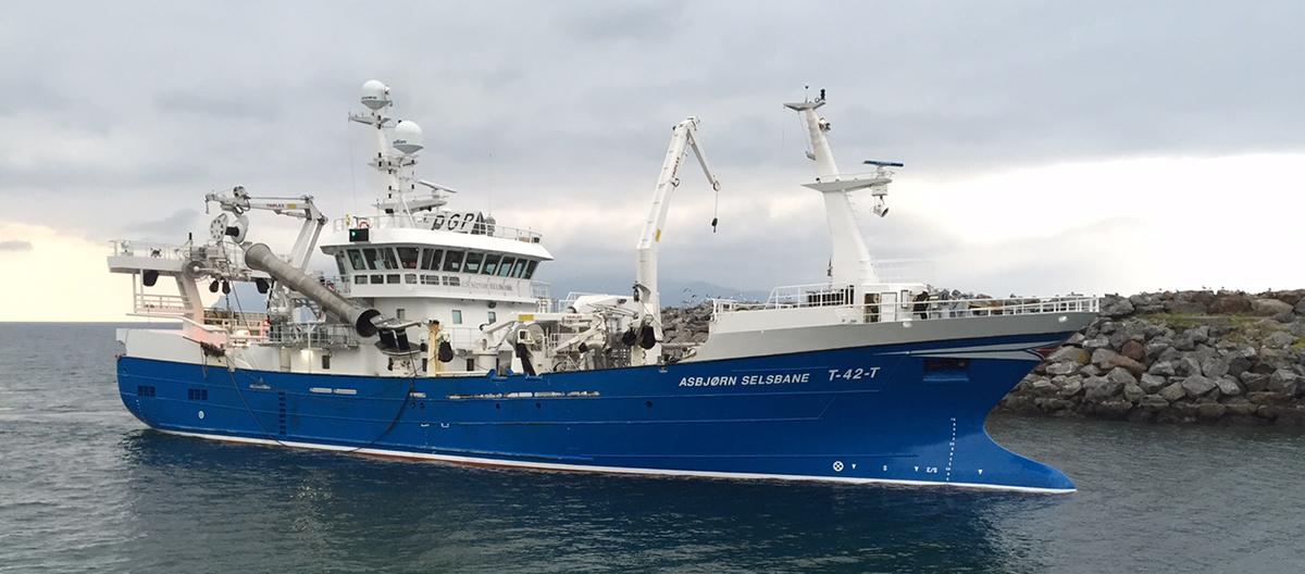 Noorse overheid staat duurzame vangst zooplankton toe - beeld nieuwsbericht
