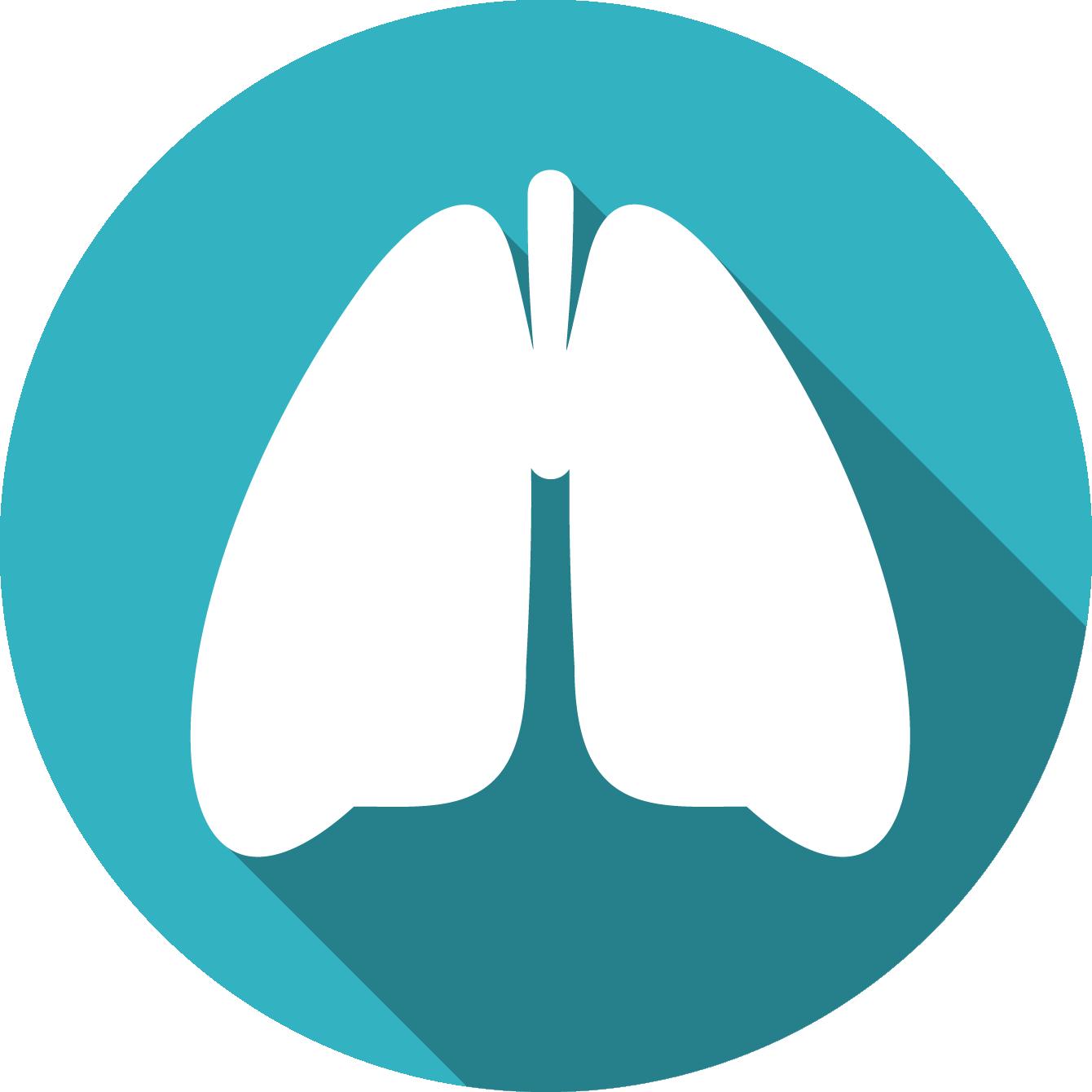 Luchtwegen longen